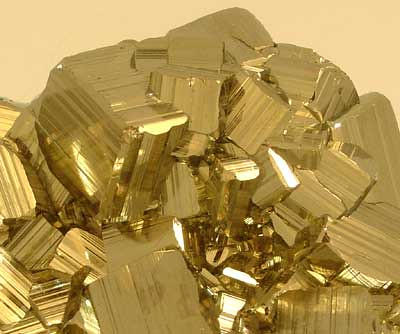 Image result for fools gold