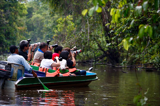 Chinese shooting crowd at a Kinabatangan river cruise | by Rudgr.com