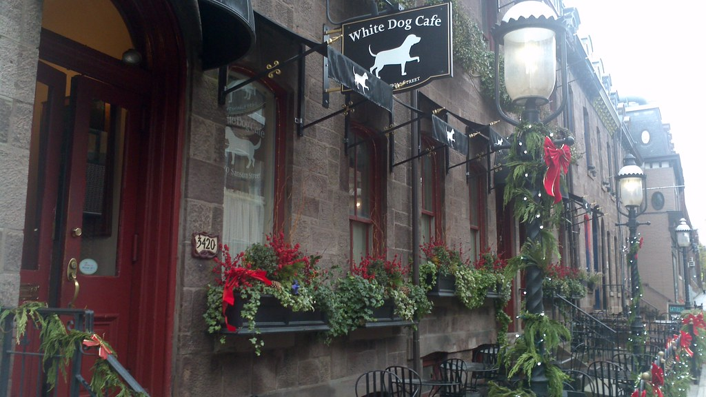 White Dog Cafe University City Reviews