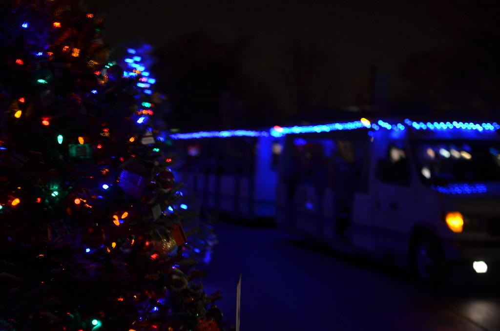 Christmas Lights At Brookfield Zoo 301 Christmas Lights