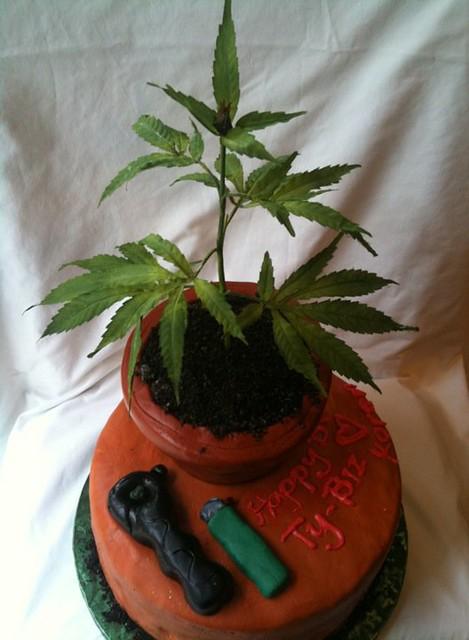 Marijuana Cakes Denver