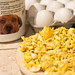 Yummy Canine Scramble - Let Cool Down