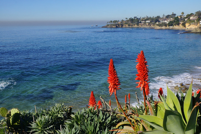 2011-12-23 01-01 Kalifornien 479 Laguna Beach | Flickr ...  2011-12-23 01-0...