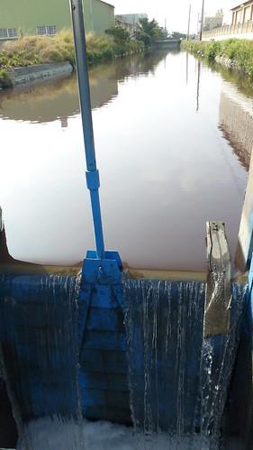 番雅溝雖然遭受高度汙染,但還是被引入農田的灌溉系統。圖片來源:柯金源