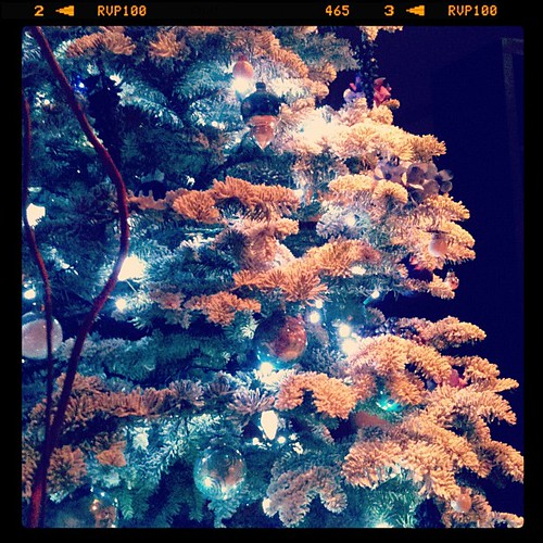 Christmas tree. | by ...love Maegan
