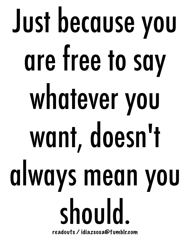 Just Because You Are Free To Say Whatever You Want Doesn