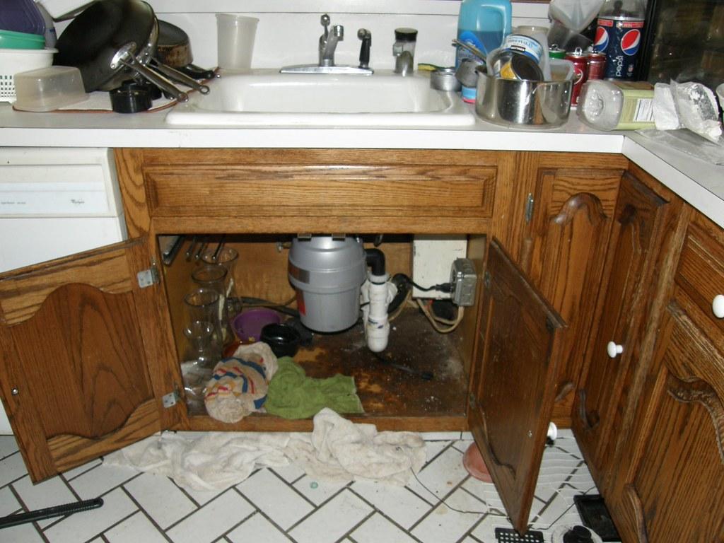 Kitchen Sink Fan Art
