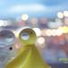 Ji Ja Bird by mr clement