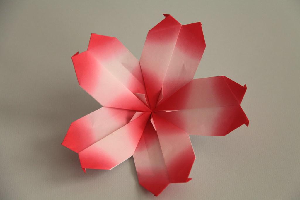 origami cherry blossom | From: Paperkawaii | j tomas | Flickr - photo#17