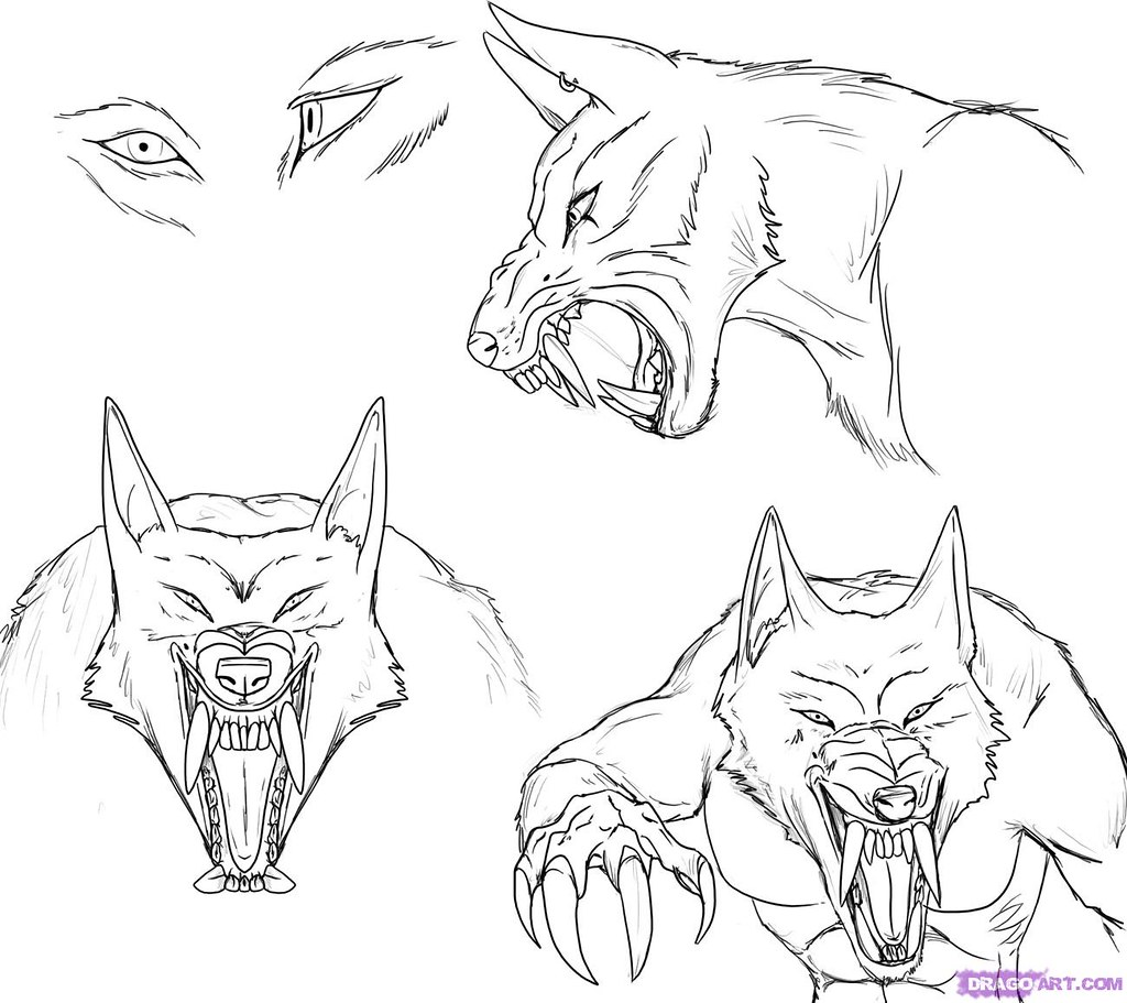How To Draw A Werewolf Face Head Eyes Step 6