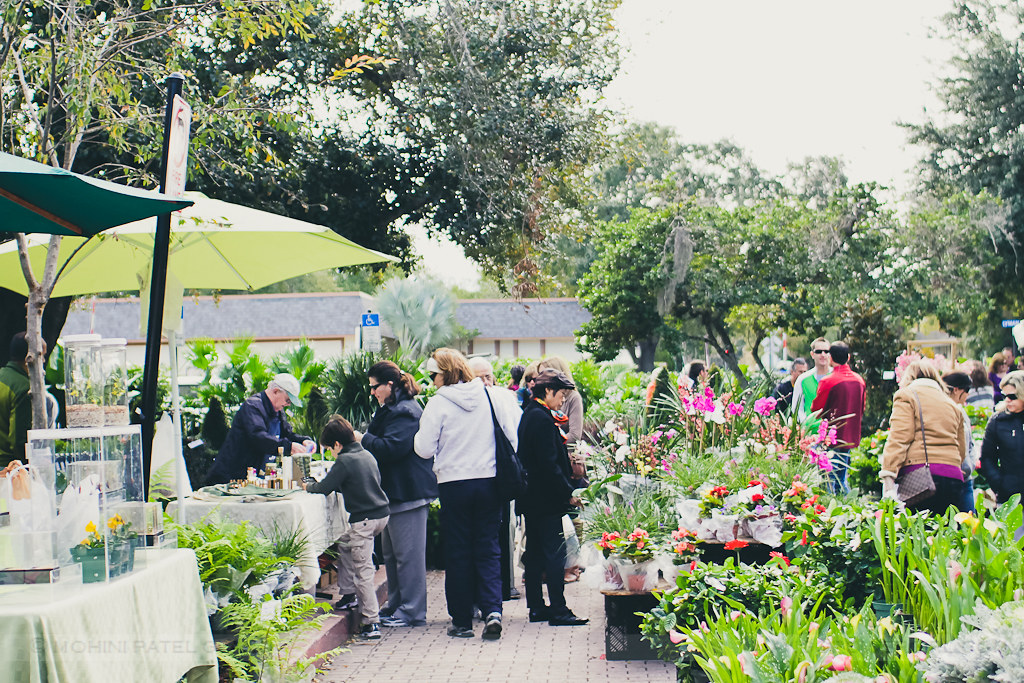 flower vendors at winter park farmers market, florida