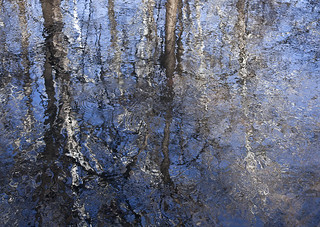 The Impressionists Reflection | by mb.kinsman