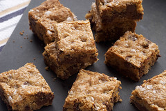 Fleur de Sel Chocolate Chip Blondies