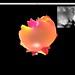 Screen Shot 2012-01-31 at 1.42.42 AM