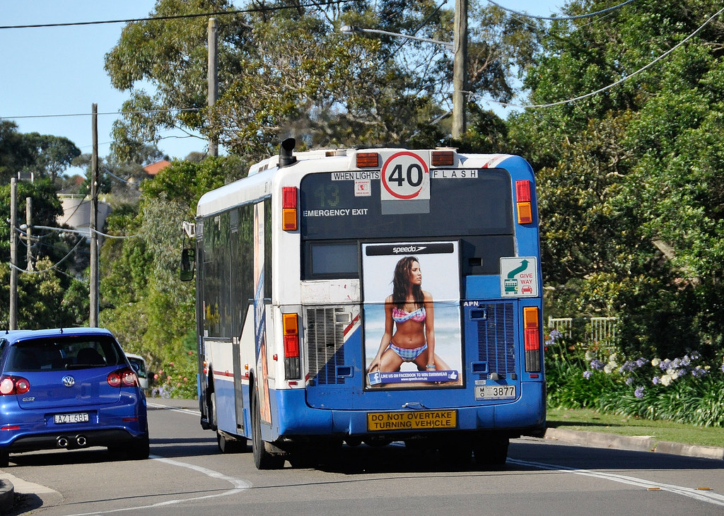 sydney bus 144 - photo#1