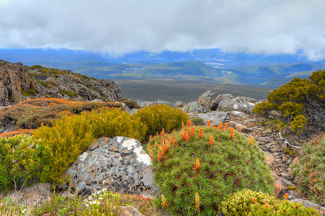Ben lomond tasmania landscape 3 flickr photo sharing for Landscaping rocks tasmania