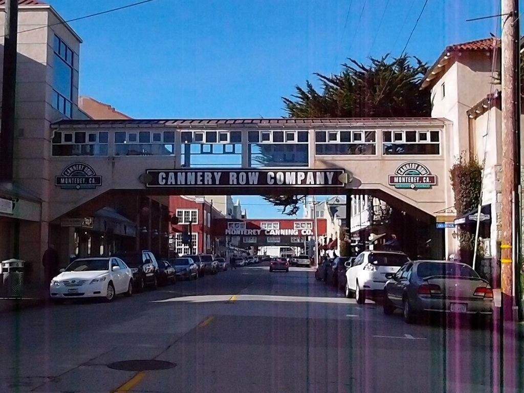 Cannery Row Essay Help