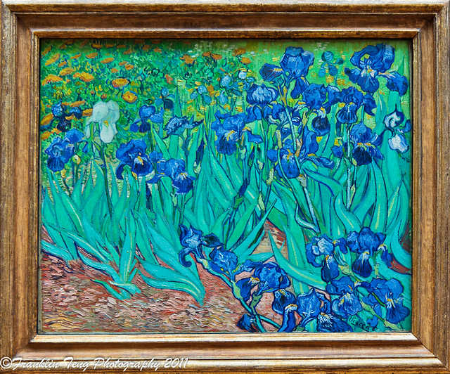 Vincent Van Gogh  Irises  1889   From the Getty MuseumVan Gogh Irises Getty