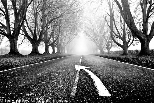 Keep on the right side! | by TDR Photographic