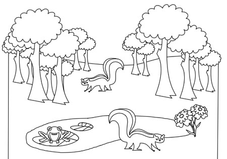 forest animals coloring book pg 3 this is some free stuff flickr. Black Bedroom Furniture Sets. Home Design Ideas