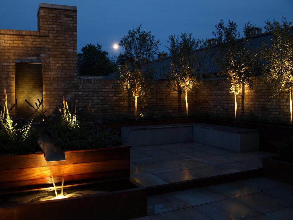 Garden lighting roof terrace cambridge olive trees uplit for Terrace trees