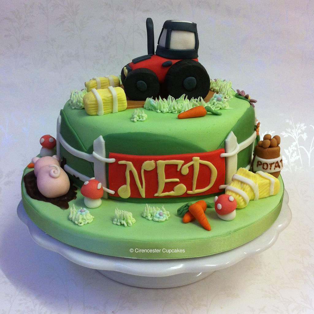 Birthday Cake - Farmyard Ned loves tractors and farms ...