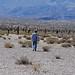 Young boy walking through biodiverse terrain