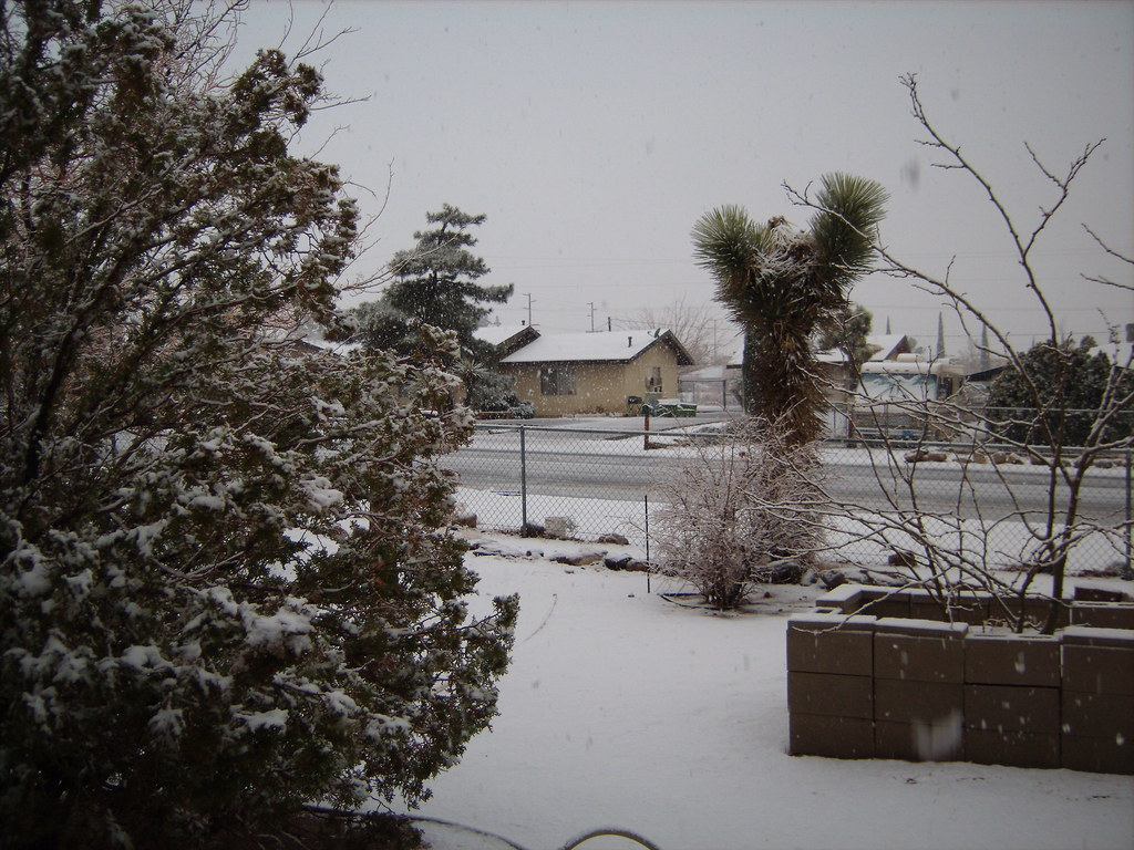 Snow In Yucca Valley 2 20 10 1 Bonnie Phillips Flickr