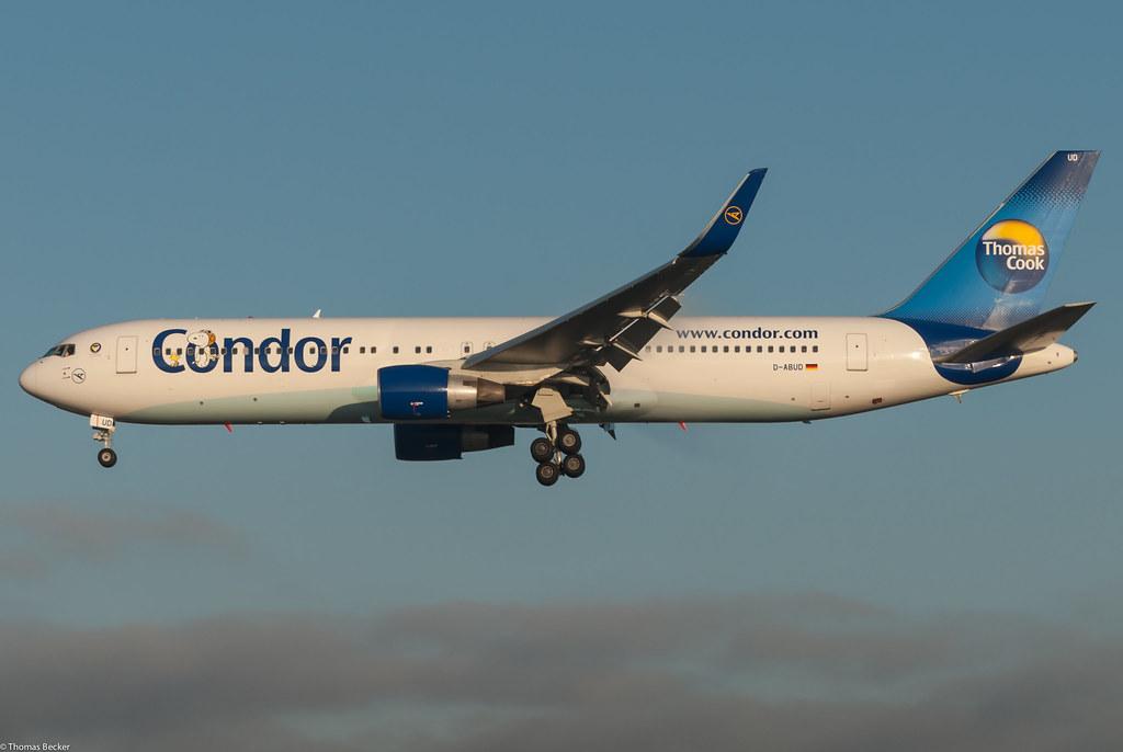 condor flugdienst bankruptcy