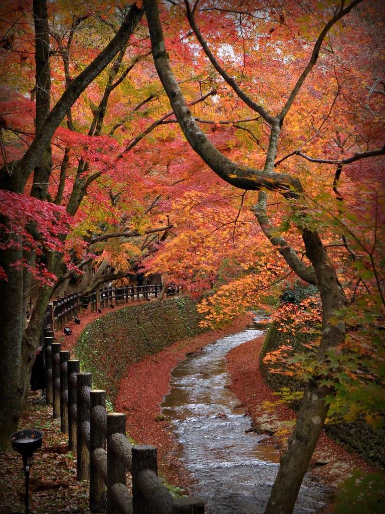 Untitled Matsuura Flickr