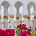 Sheikh Zayed Mosque 1
