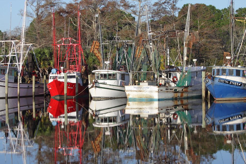 Scipio creek marina apalachicola fl from the bear for Fishing jobs in florida