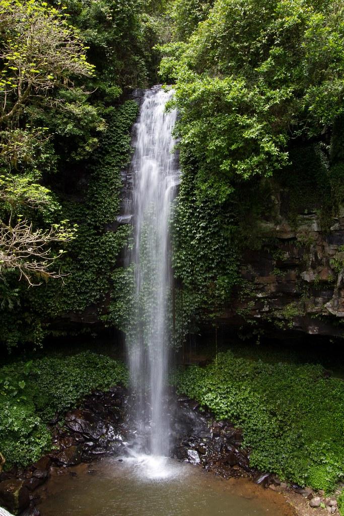Crystal Falls Dorrigo Nsw This Is Crystal Falls At The