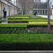 Berlin Museumsinsel, unterschiedliche Buchsbäume 2002 im Kolonnadenhof