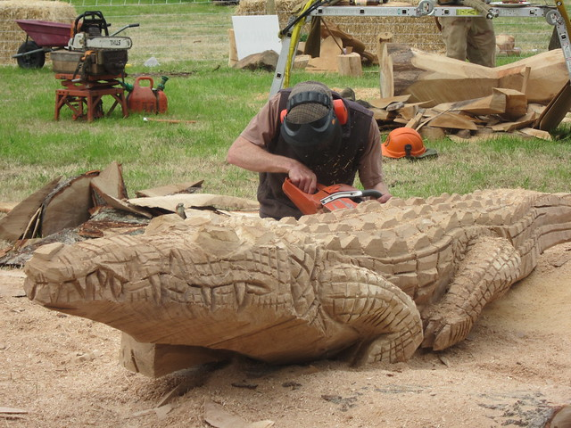 Chainsaw carving crocodile woodfest flickr photo