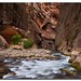 Where the rapids take you, Zion NP, UT