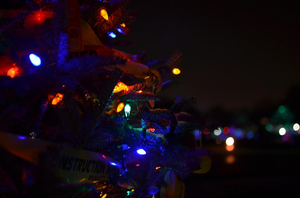 Christmas Lights At Brookfield Zoo 298 Christmas Lights