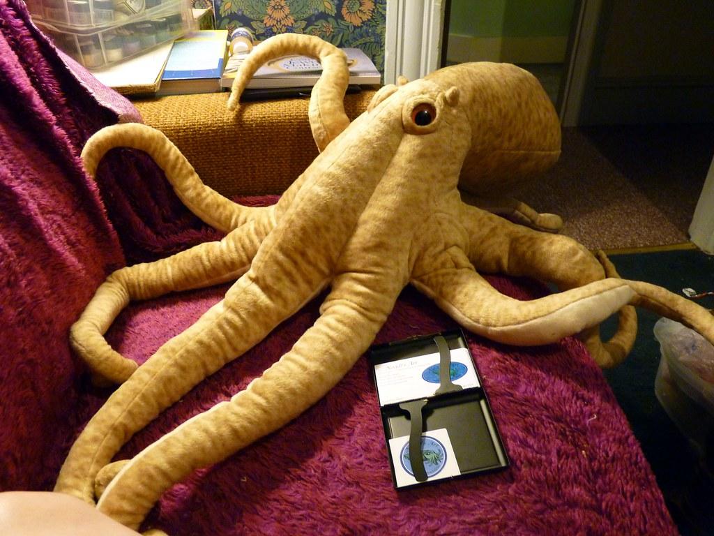 Gigantic Plush Octopus Xmas Present From My Boyfriend