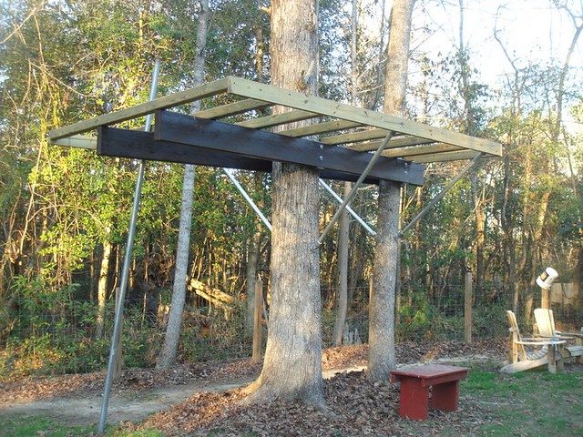 Sky barn glover design treehouse entry flickr photo for How to build a treehouse roof