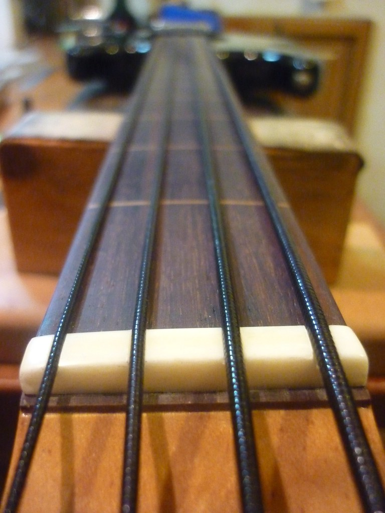 Nylon Bass String : nylon tape wound bass strings a nice alternative to flat flickr ~ Vivirlamusica.com Haus und Dekorationen