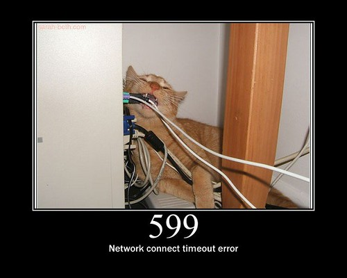 599 - Network connect timeout error | by GirlieMac