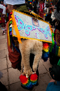 Cuzco_Traditional_Dance-23 | by Piratepenpen