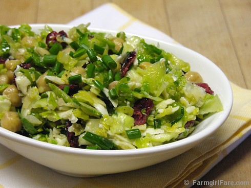 Raw Brussels Sprouts Salad with Pecorino Romano, Chives, and a Lemony Caper Dressing 1 | by Farmgirl Susan