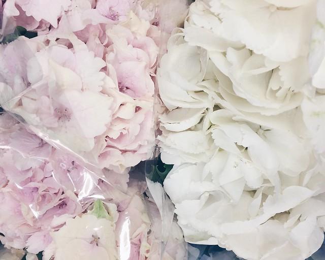 Untitled, kesä, summer, holiday, loma, summer holiday, kesäloma, kukat, flowers, life, elämä, hydrangea bouquets, hortensia kimppu, pastelli väri, shade, color, pastel, vaaleanpunainen, pinkki, valkoinen, white, sininen, blue, pastel blue, pastel pink, holiday starts, loman alku, honor of, kunniaksi, light pink,kimput, kukkakimput,