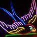 Neon Sparrow
