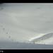 01-12 snowy landscape_06782