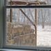 Snowfall through the upstairs windows 1 - FarmgirlFare.com