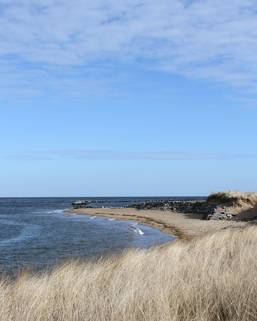 Plum Island Beach: Plum Island MA January 2012