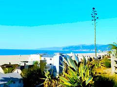 Cutouts of Santa Monica Beach