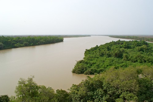River Gambia National Park | by thebombcircle